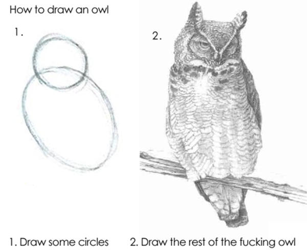 How to draw an owl: First draw two circles, then finish the damn thing