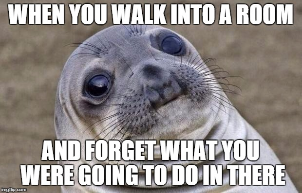 Seal wondering 'When you walk into a room and forget what you were going to do in there'